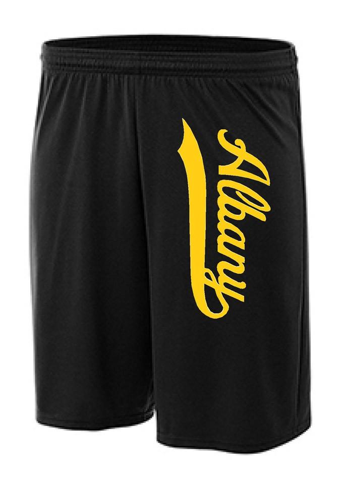 Albany Swoosh Mesh Shorts