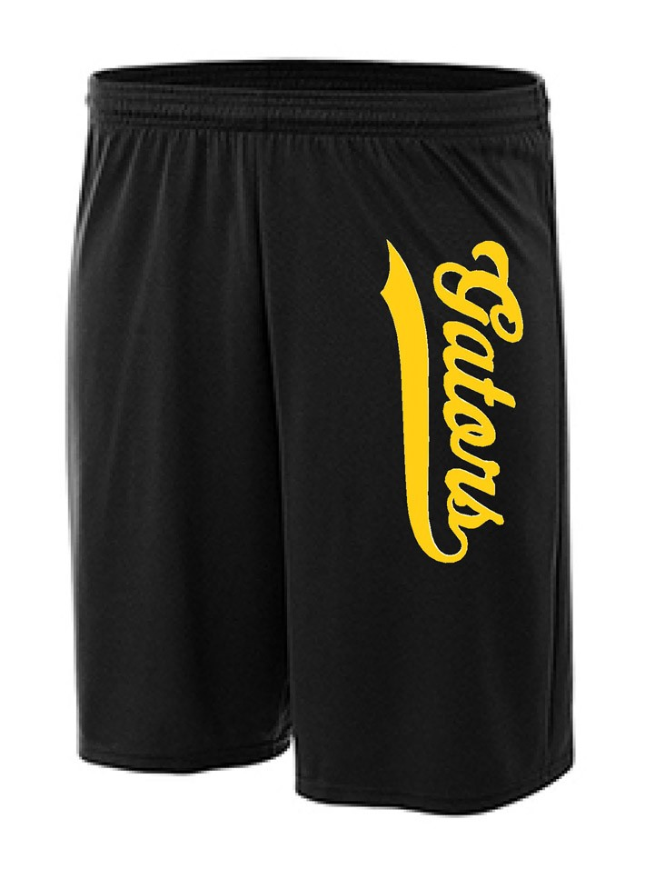 Albany Gators Mesh Shorts