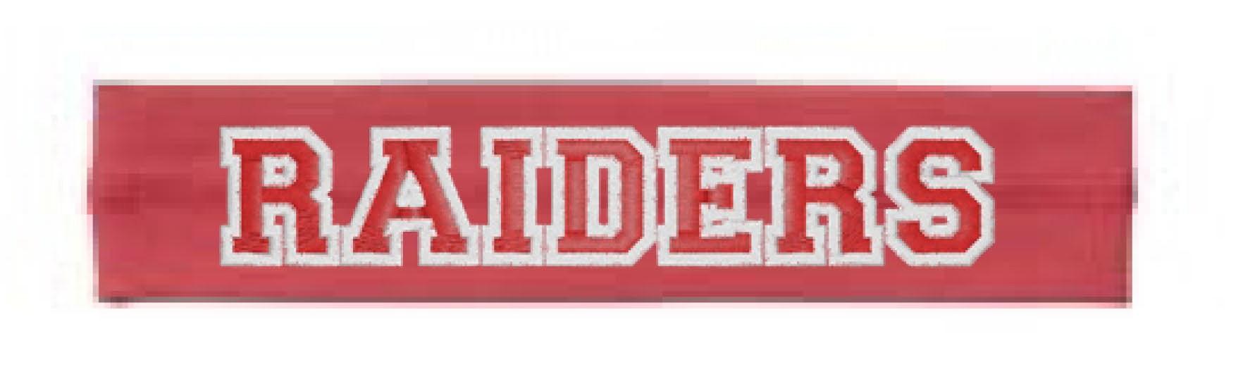 Raiders Unisex Headbands