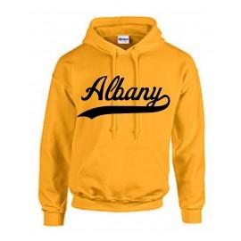 Albany Swoosh Hoodie