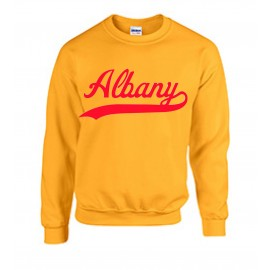 Albany Swoosh Sweatshirt