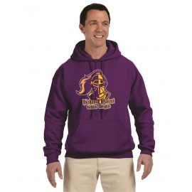 Holland Patent Golden Knights Bella + Canvas Pullover Hoodie